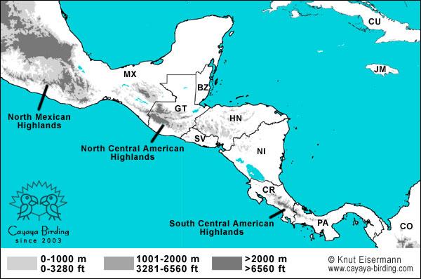 Vogelbeobachtung in Mittelamerika - CAYAYA BIRDING